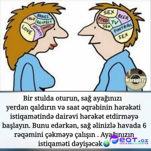 Maraqli Faktlar Dan Yazili Səkillər 4 Feat Az Sekiller Xeberler Melumatlar
