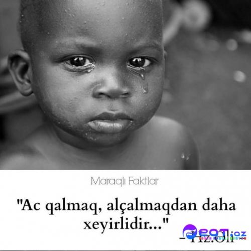 Maraqli Faktlar Dan Yazili Səkillər 10 Feat Az Sekiller Xeberler Melumatlar