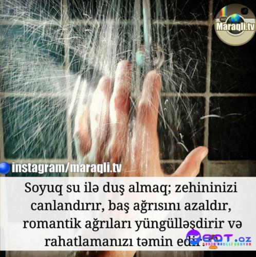 Maraqli Faktlar Dan Yazili Səkillər 14 Feat Az Sekiller Xeberler Melumatlar