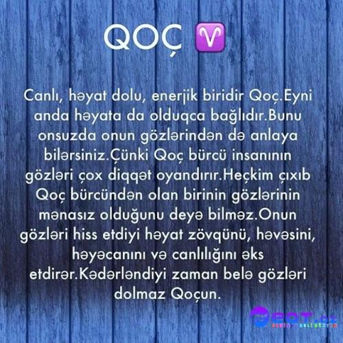 Oxatan Burcu Qadin Pikcek Sekiller