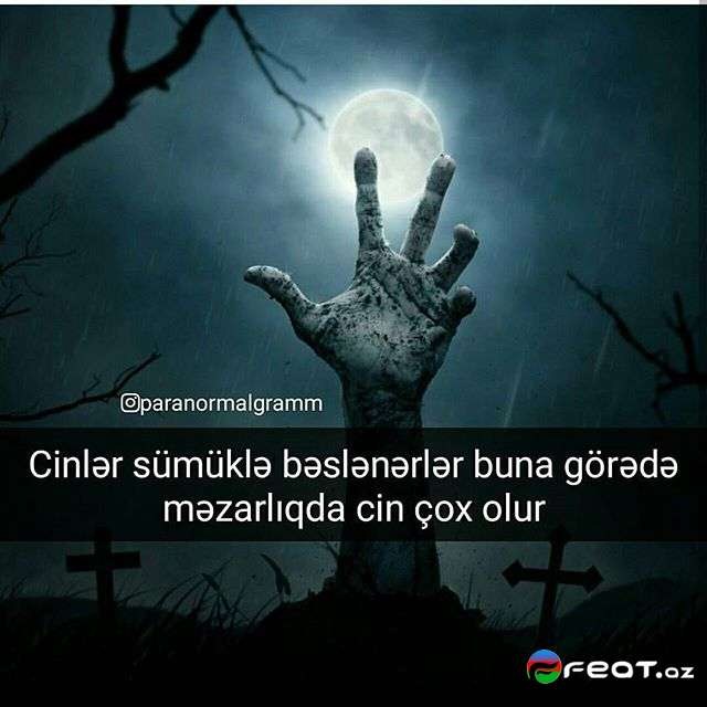 Qorxulu Yazili Səkillər 16 Feat Az Sekiller Xeberler Melumatlar
