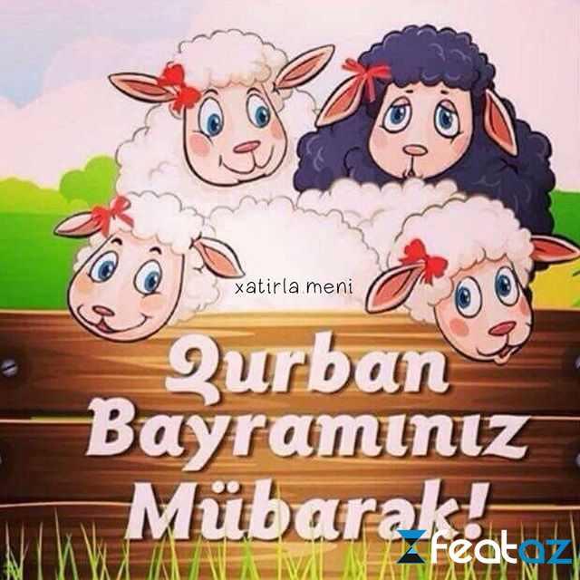 Qurban Bayraminiz Mubarək Yazili Səkilləri 2018 1 Qurban Bayrami Tebrikleri Yeni Azerice Ingilis Rus Sekiller Statuslar Profil Maraqli