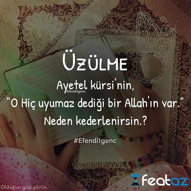 Anaya Aid Sozlu Sekiller Images Səkillər